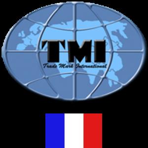 logo-tmi-france